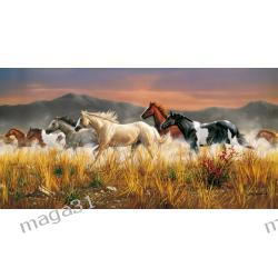 CLEMENTONI PUZZLE 13200 BAND OF THE THUNDER 38006 Schleich