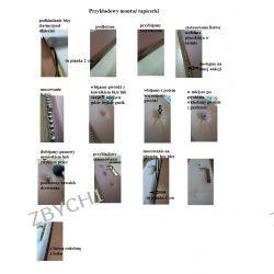 Tapicerka drzwi ocieplenie wygłuszenie instrukcja montażu przykładowy montaż  Dom i Ogród