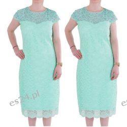 Śliczna sukienka z koronki Gracia mięta 44