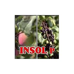 INSOL P 1 litr