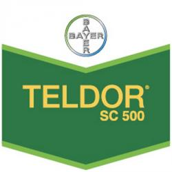 TELDOR 500 SC 500 ml