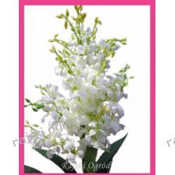 JUCCA sztuczne drzewko JUKA yuka 150 kwiat kwiaty