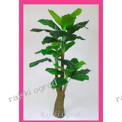 sztuczne drzewko SZTUCZNE DRZEWKA sztuczne kwiaty