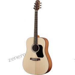 Gitara akustyczna WALDEN D 350 (N)