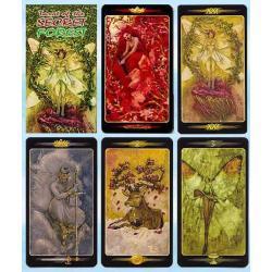 Secret Forest Tarot - Tarot tajemniczego lasu - Lucia Mattioli 66 x 120 mm - karty poświęcone