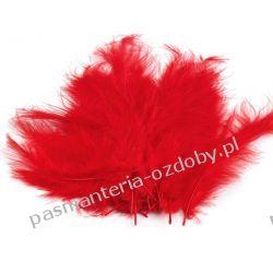 PIÓRA / PIÓRKA STRUSIE 9-16cm - 20szt - CZERWONE Włóczki