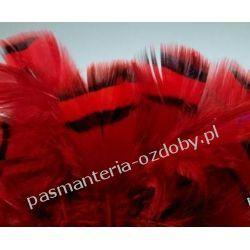 PIÓRA, PIÓRKA DEKORACYJNE KUROPATWY 5-9cm / 20szt. - CZERWONE