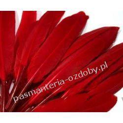 KACZE PIÓRA, KOLOROWE PIÓRKA  WINETOU 9-14 cm - czerwony Nici
