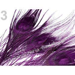 PAWIE  PIÓRA,  PIÓRKA 25-30cm  - fioletowy