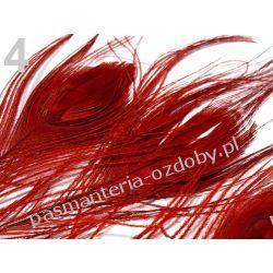 PAWIE  PIÓRA,  PIÓRKA 25-30cm  - czerwony