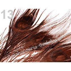 PAWIE  PIÓRA,  PIÓRKA 25-30cm  - brązowy