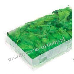 PIÓRA, PIÓRKA DEKORACYJNE 10g ok. 200szt - zielone Przedmioty do ozdabiania