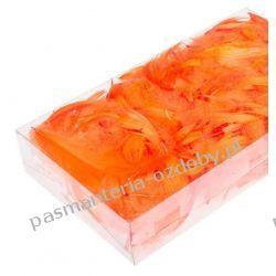 PIÓRA, PIÓRKA DEKORACYJNE 10g ok. 200szt - pomarańczowe Pozostałe