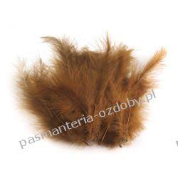 PIÓRA / PIÓRKA STRUSIE 9-16cm - 20szt - Brązowy Igły, szpilki i agrafki
