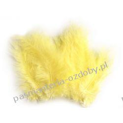PIÓRA / PIÓRKA STRUSIE 9-16cm - 20szt - Jasny Żółty Scrapbooking