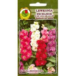 Nasiona 1 g Lewkonia Excelsior Kanu czerwony