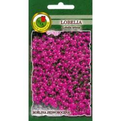 Nasiona 0,2 g Lobelia Rosamunda różowa nowość