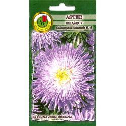 Nasiona 0.8 g  Aster Książęcy fioletowy hit
