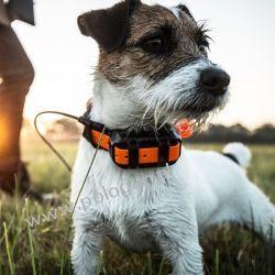 Dodatkowa Obroża Garmin T 5 MINI z funkcją śledzenia psa  Zwierzęta