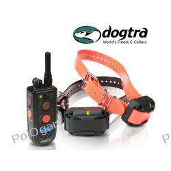 elektroniczna obroża Dogtra 1212 NCP zasięg 1200 metrów dla dwóch psów
