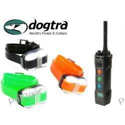 Elektroniczna obroża Dogtra EDGE 4503  Zasięg 1600 metrów dla trzech psów