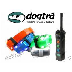 Elektroniczna obroża Dogtra EDGE 4504  Zasięg 1600 metrów dla czterech psów