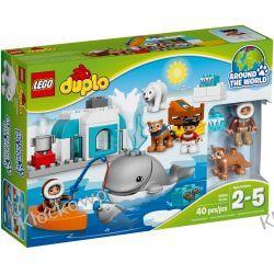 10803 ARKTYKA (Arctic) KLOCKI LEGO DUPLO  Pirates