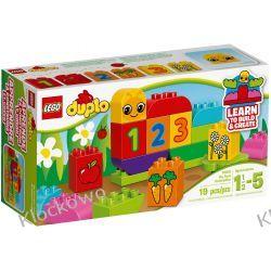 10831 MOJA PIERWSZA GĄSIENICZKA (My First Caterpillar) KLOCKI LEGO DUPLO  Kompletne zestawy
