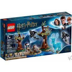 75945 EXPECTO PATRONUM KLOCKI LEGO HARRY POTTER Dla Dzieci