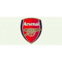 Kubek magiczny Arsenal Londyn ! Kanonierzy na Twoim kubku ! 14