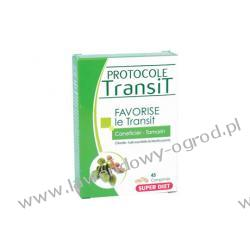 Protocol Transit - 45 tabl.