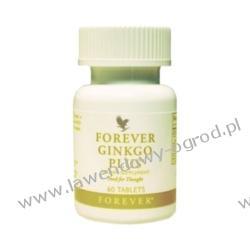 FOREVER GINKGO PLUS - 60tabl