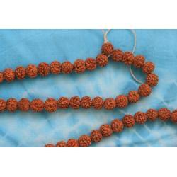 buddyjska MALA - małe nasiona rudraksza - Nepal