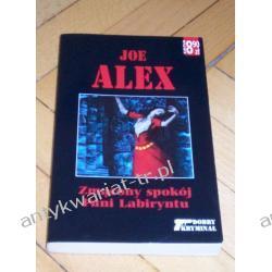 Zmącony spokój Pani Labiryntu Joe Alex