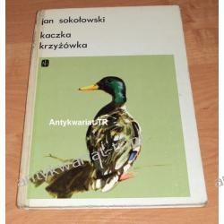 Kaczka krzyżówka, Jan Sokołowski