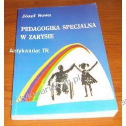Pedagogika specjalna w zarysie, Józef Sowa Pedagogika, resocjalizacja