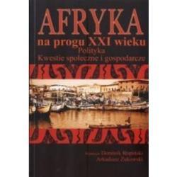 Afryka na progu XXI wieku  Polityka Kopiński