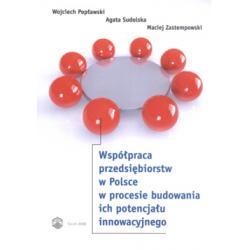 Współpraca przedsiębiorstw w Polsce w procesie
