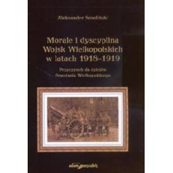 Morale i dyscyplina Wojsk Wielkopolskich w latach