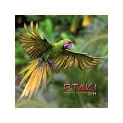Kalendarz 2011. Ptaki.  r.2010
