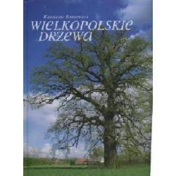 Wielkopolskie drzewa  r.2009