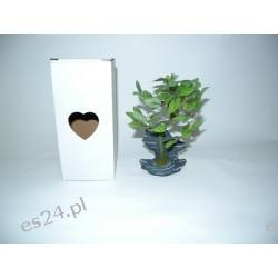 "Kwiatek ""Bonsai - kamień"""