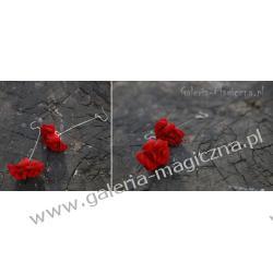 Kolczyki Czerwone Różyczki