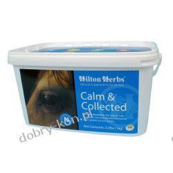 Hilton Herbs Calm & Collected- wyciszenie i koncentracja 1kg