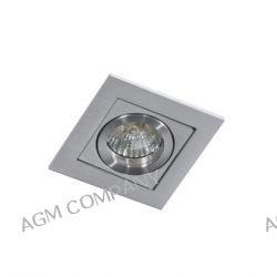Lampa Wpust PACO 1 ALUMINIUM GM2103 ALU Downlight AZzardo