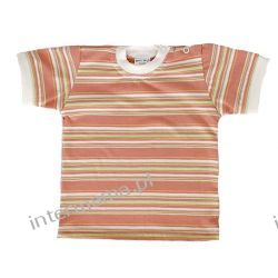 Koszulka paseczki papaya kr. rękaw r.74 Odzież