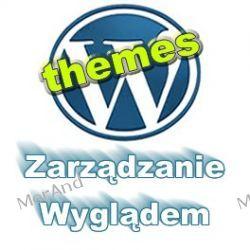 Jak zarządzać wyglądem czyli skórką bloga VWP02 Internet