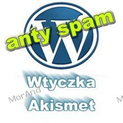 Uruchomienie wtyczki antyspamowej Akismet z zaplecza bloga VWP04 Internet