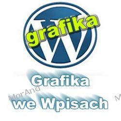 Instrukcje umieszczania grafik do wpisu i do widgetu Wordpress VWP09 Internet