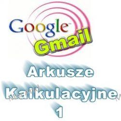 Zastosowanie arkusza kalkulacyjnego Google do promocji i reklamy VGO07 Oprogramowanie